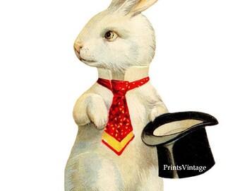 White Rabbit Clipart, Rabbit Print, Easter Bunny Clipart, Easter Clipart, Printable Art, Watercolor Clipart, Vintage Art, Instant Download