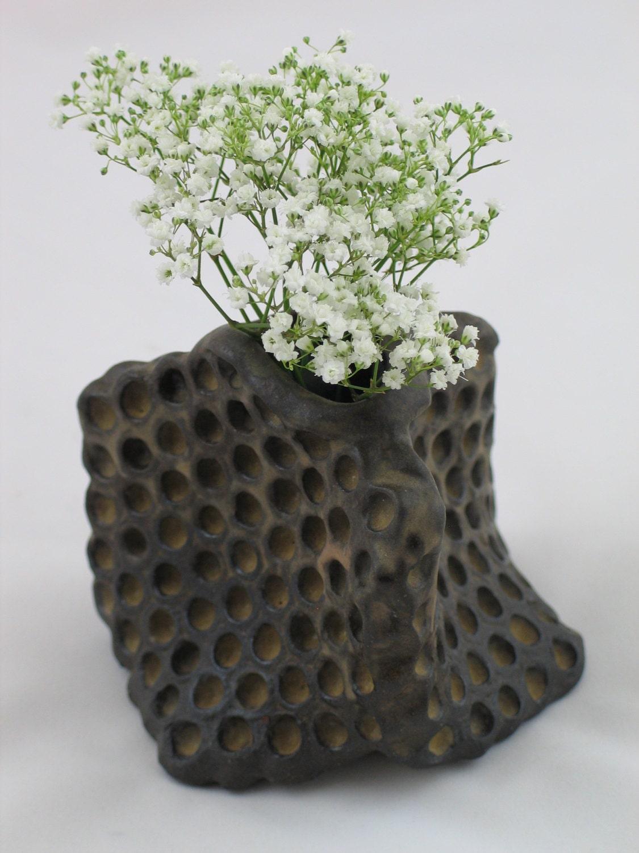 Ceramic Honeycomb vase.  Apis habilis:  Vase Number 15