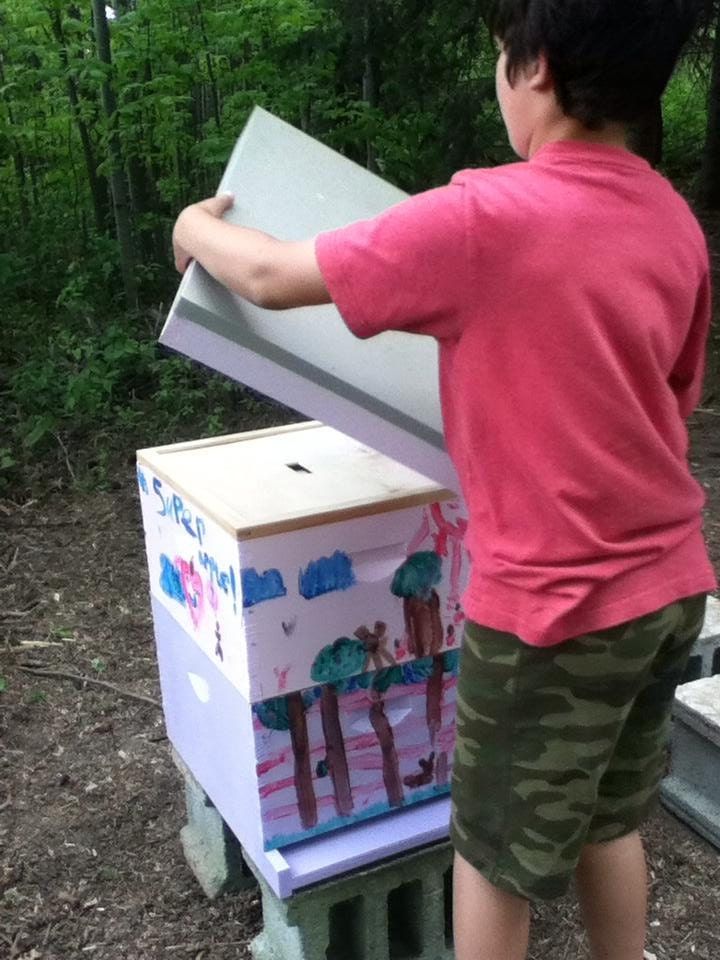 Putting the lid on our First Hive