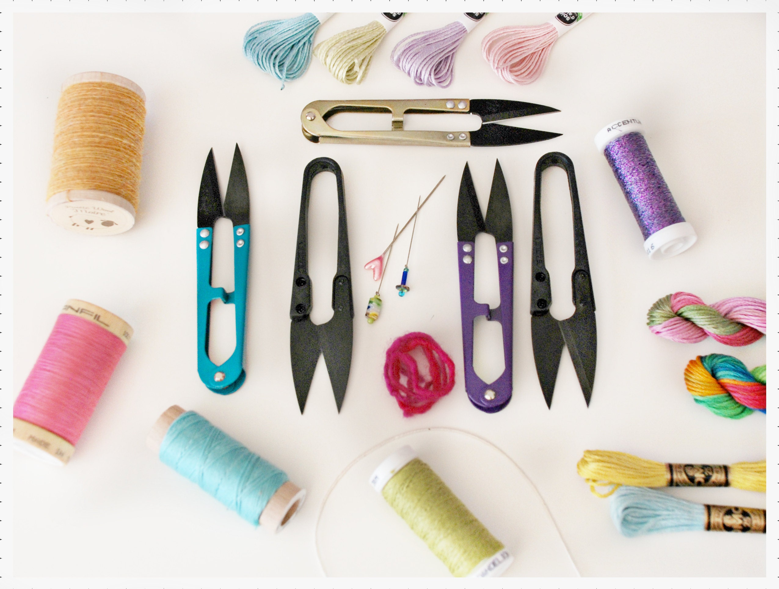 Thread and Floss Snips