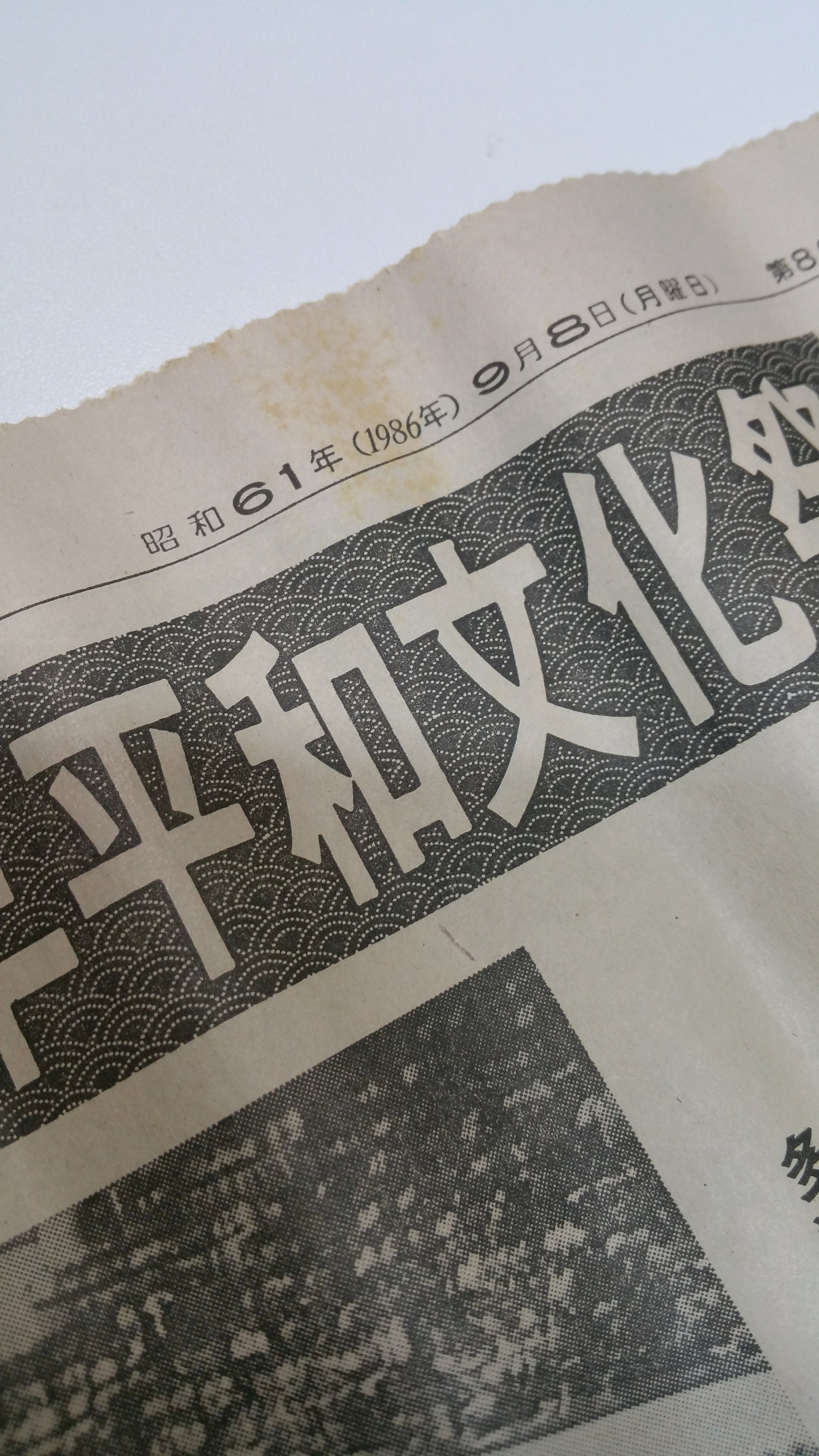 newspaper hidden inside tanmono