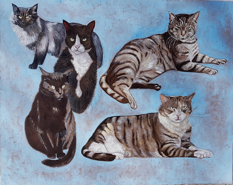 My Great Cat Family