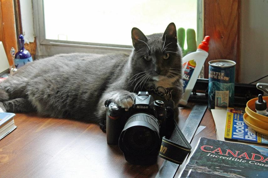 seymour and camera