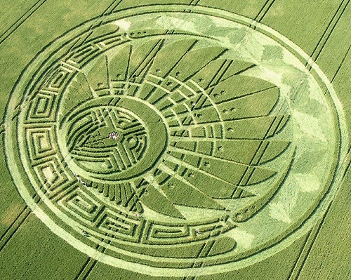 Mayan Head Dress Crop Circle