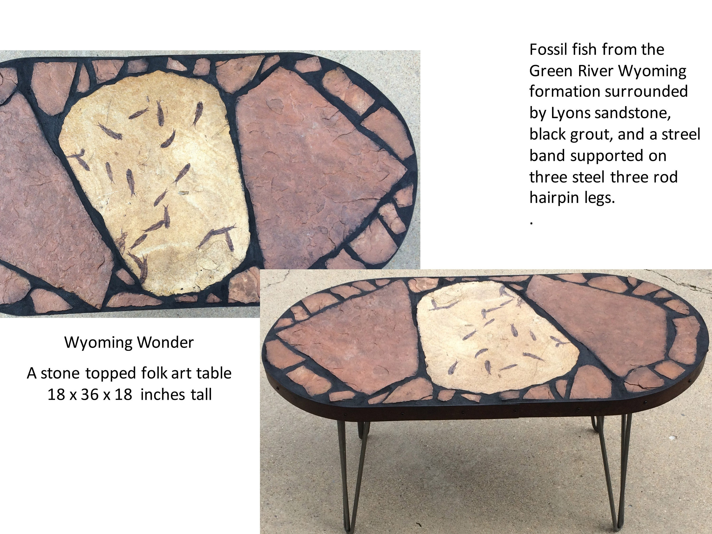 I Found This Slab Of Pertrified 60 Million Year Old Fish At The Denver Gem  And Mineral Show. This Was One Of My First Oval Shaped Tables And The Fish  Shape ...