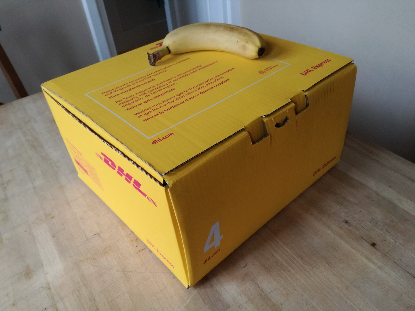 >2kg DHL box (box #4) which contains an XXL Sloth