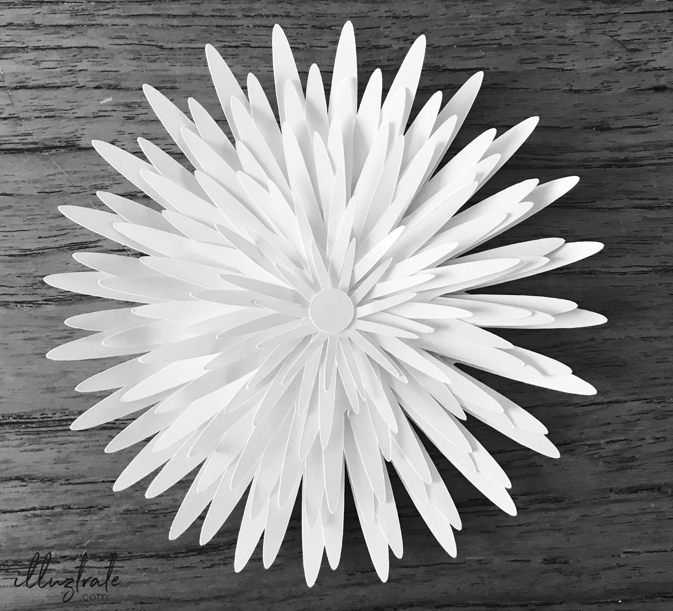Free svg cut flower