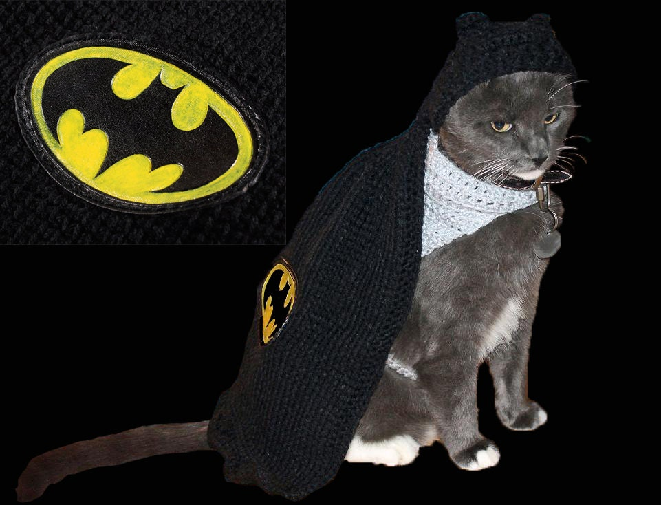 pet, costume, batman, batcat, batdog