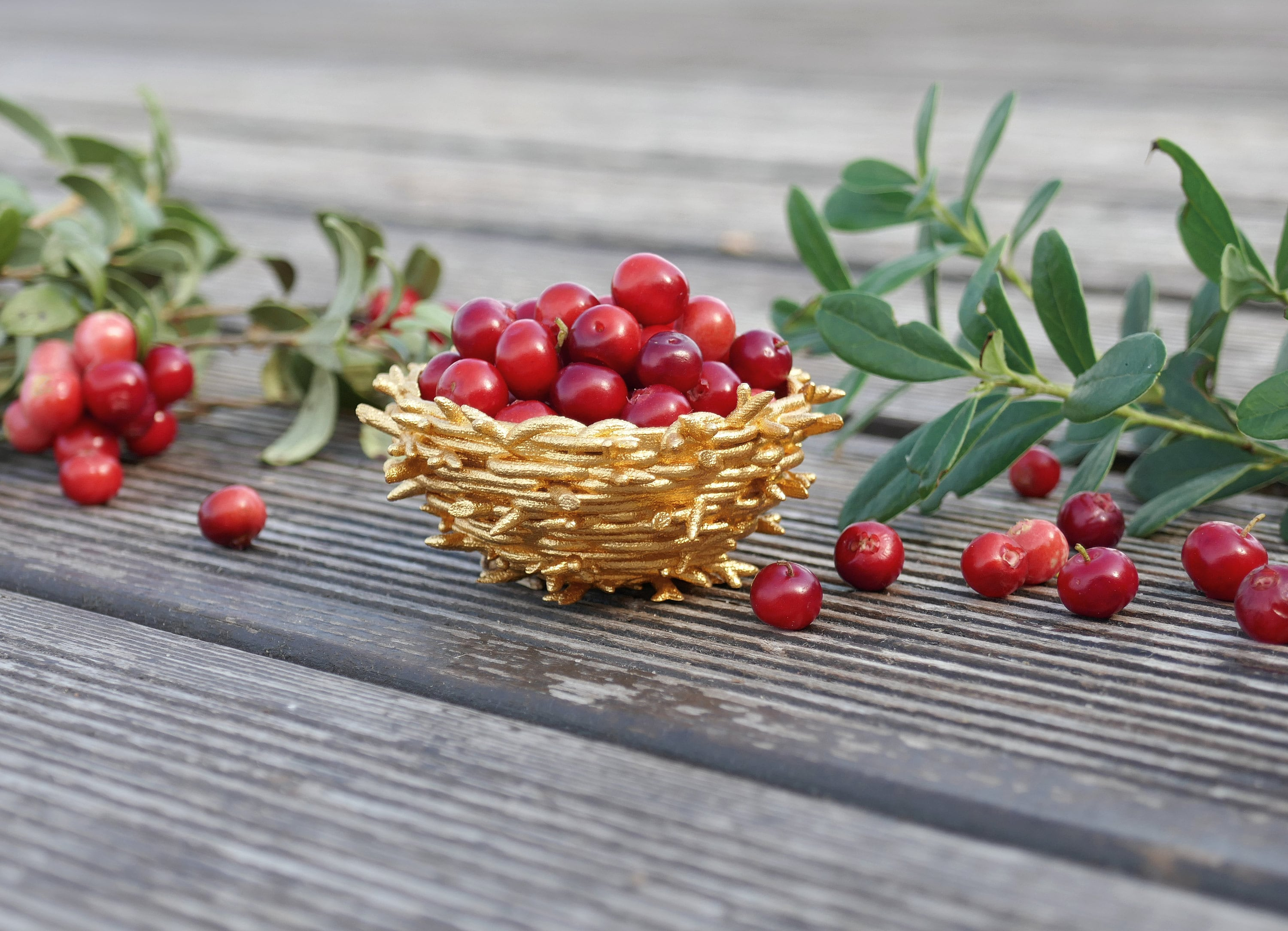 3D printed Gold Nest full of cranberries