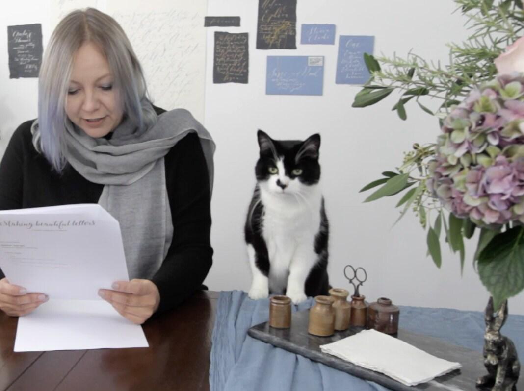 calligraphers cat
