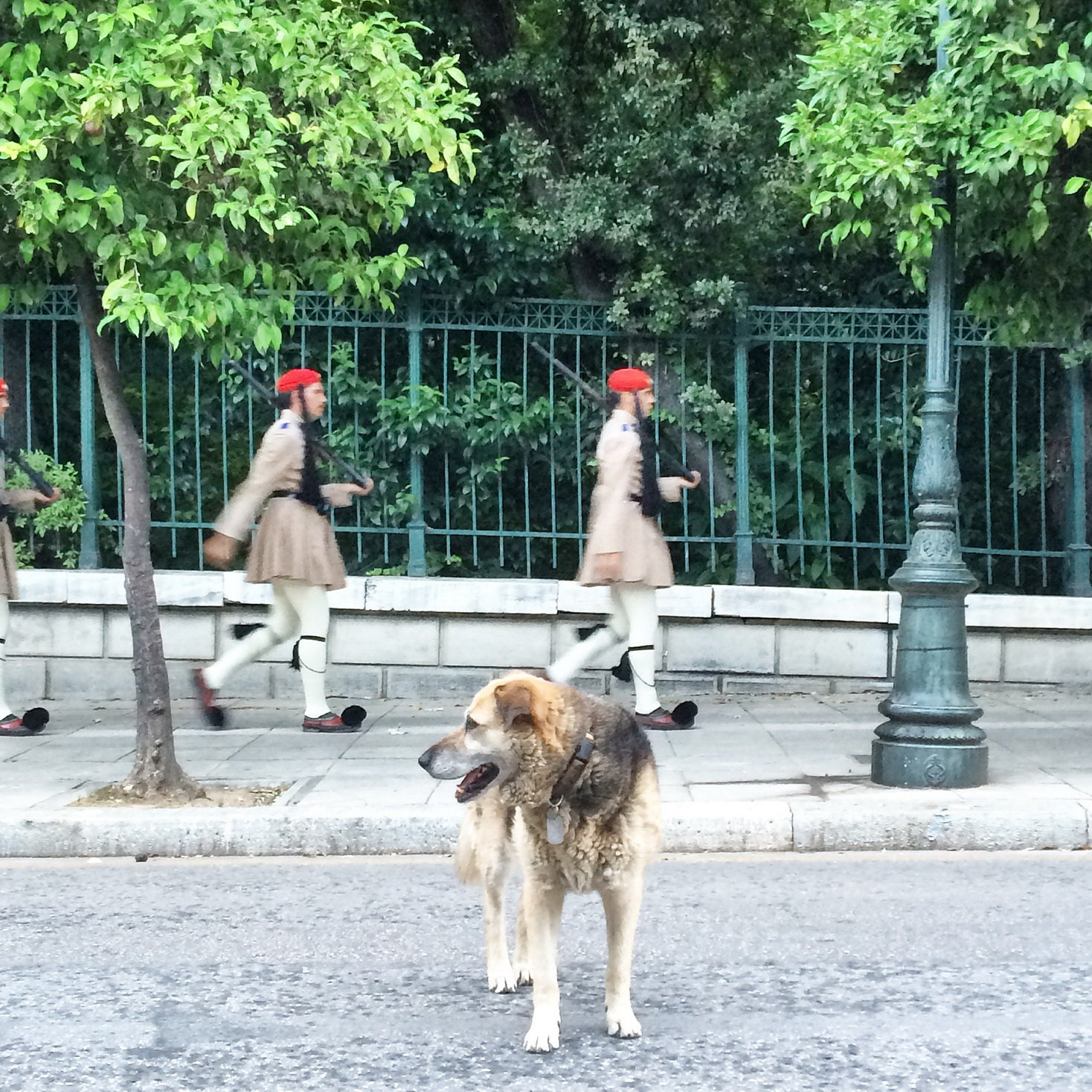 City Guards