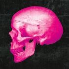 PinkSkullCA