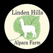 LindenHillsAlpacas