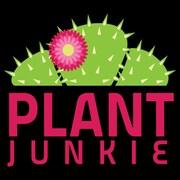 PlantJunkie