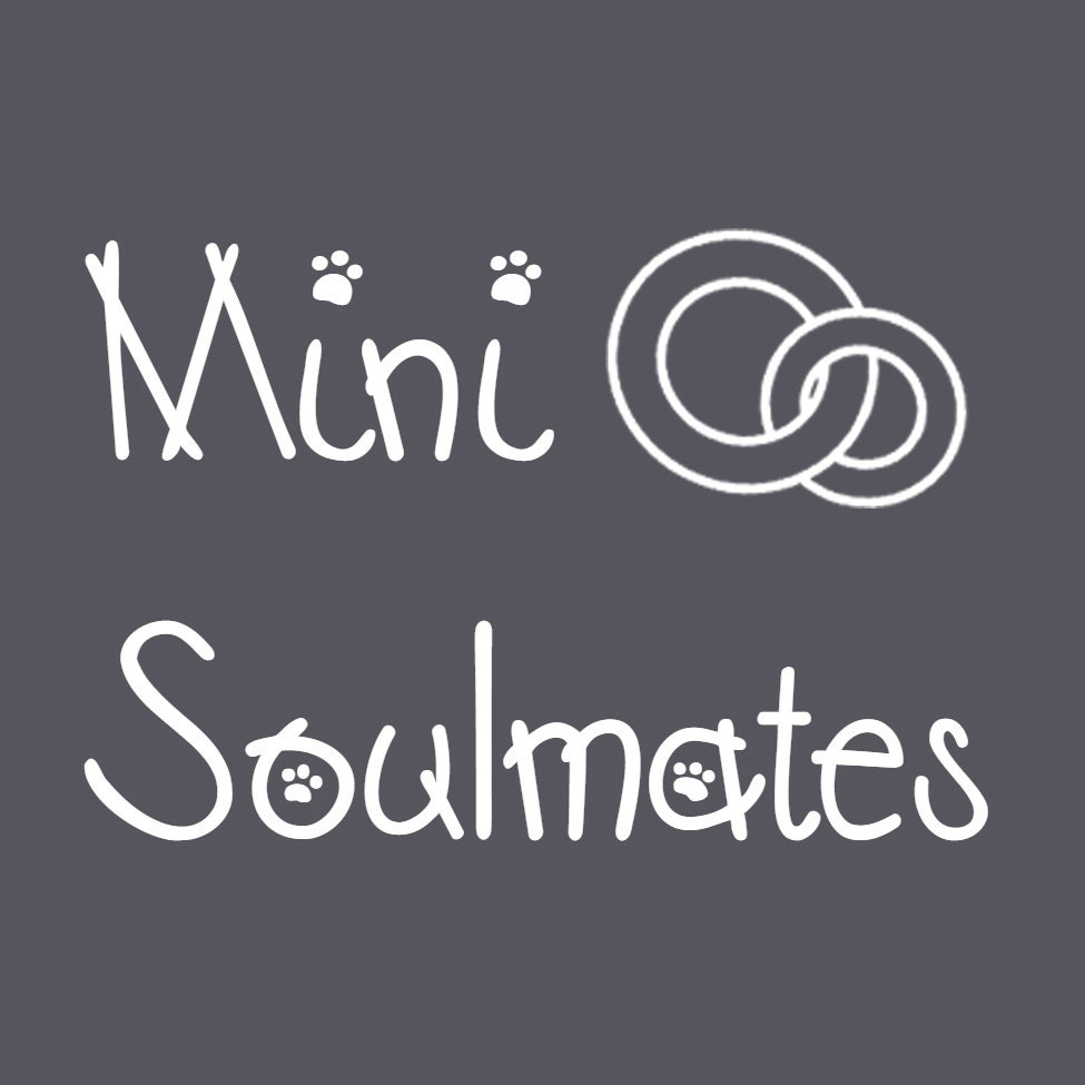 Mini soulmates spiritual soul whispers by minisoulmates on etsy biocorpaavc Images