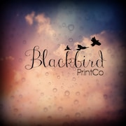 BlackbirdPrintCo