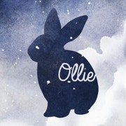 OllieDesignStudio