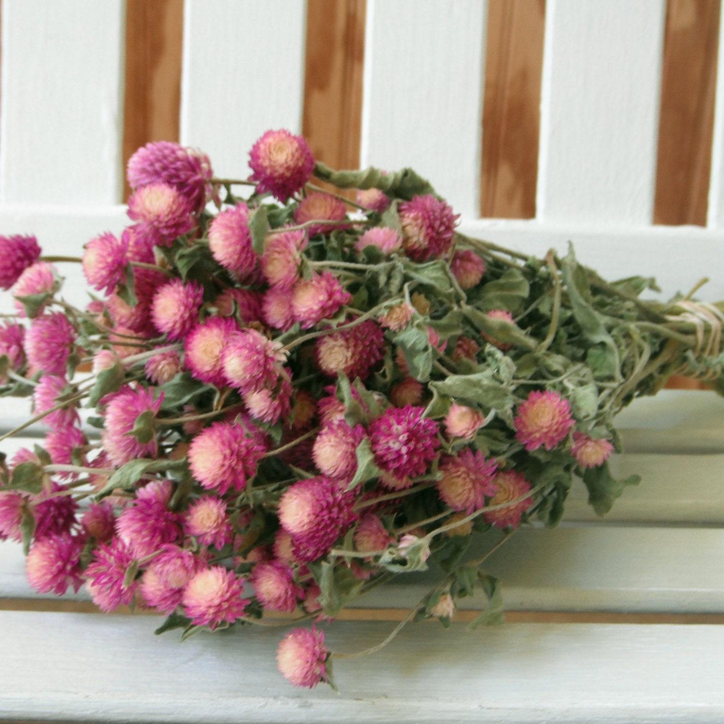 Sale DRIED ENGLISH LAVENDER Flower Bunch Dried bouquet