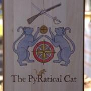 ThePyRaticalCat