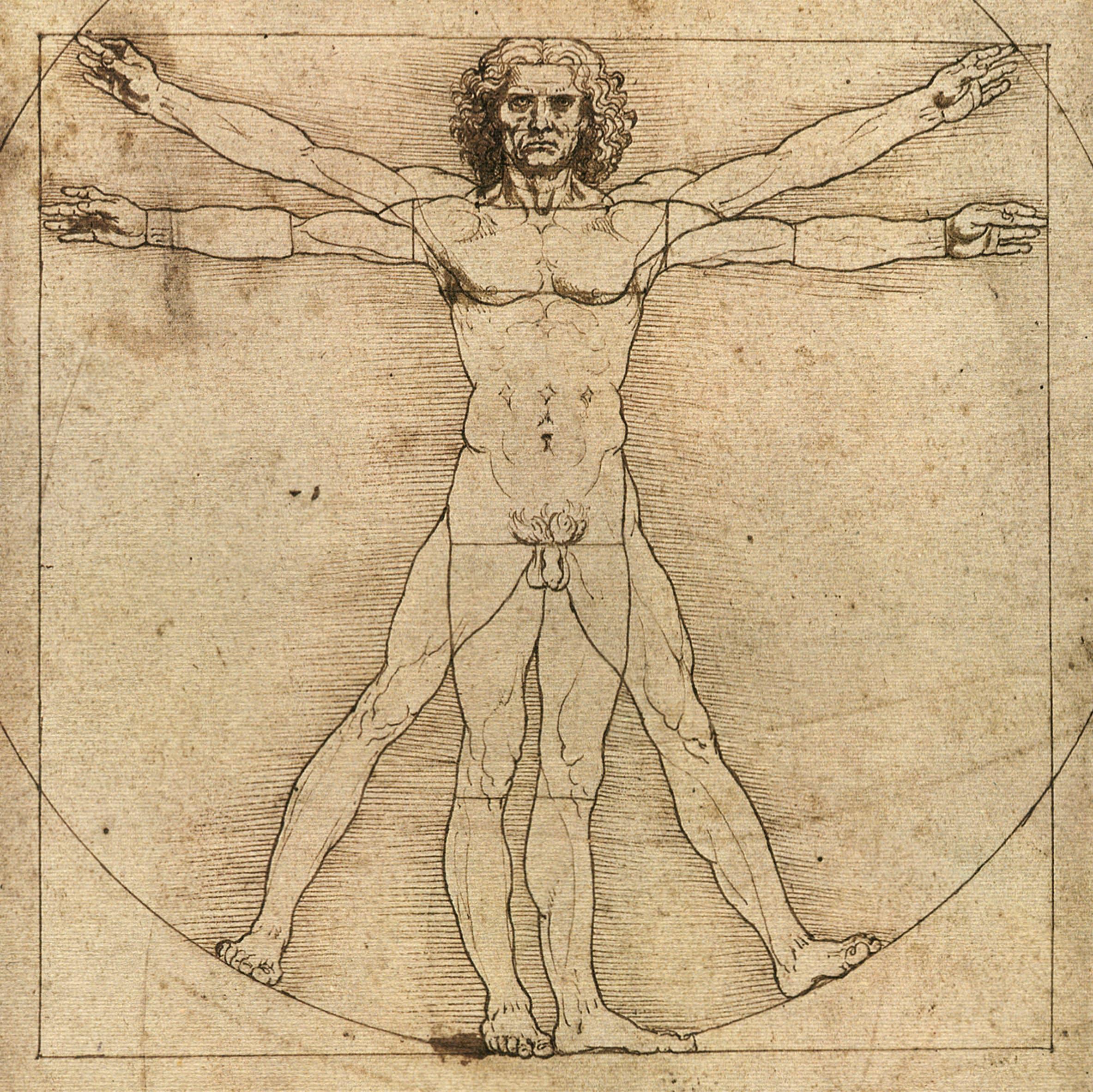 Da Vinci Art Prints by DaVinciArtPrints on Etsy