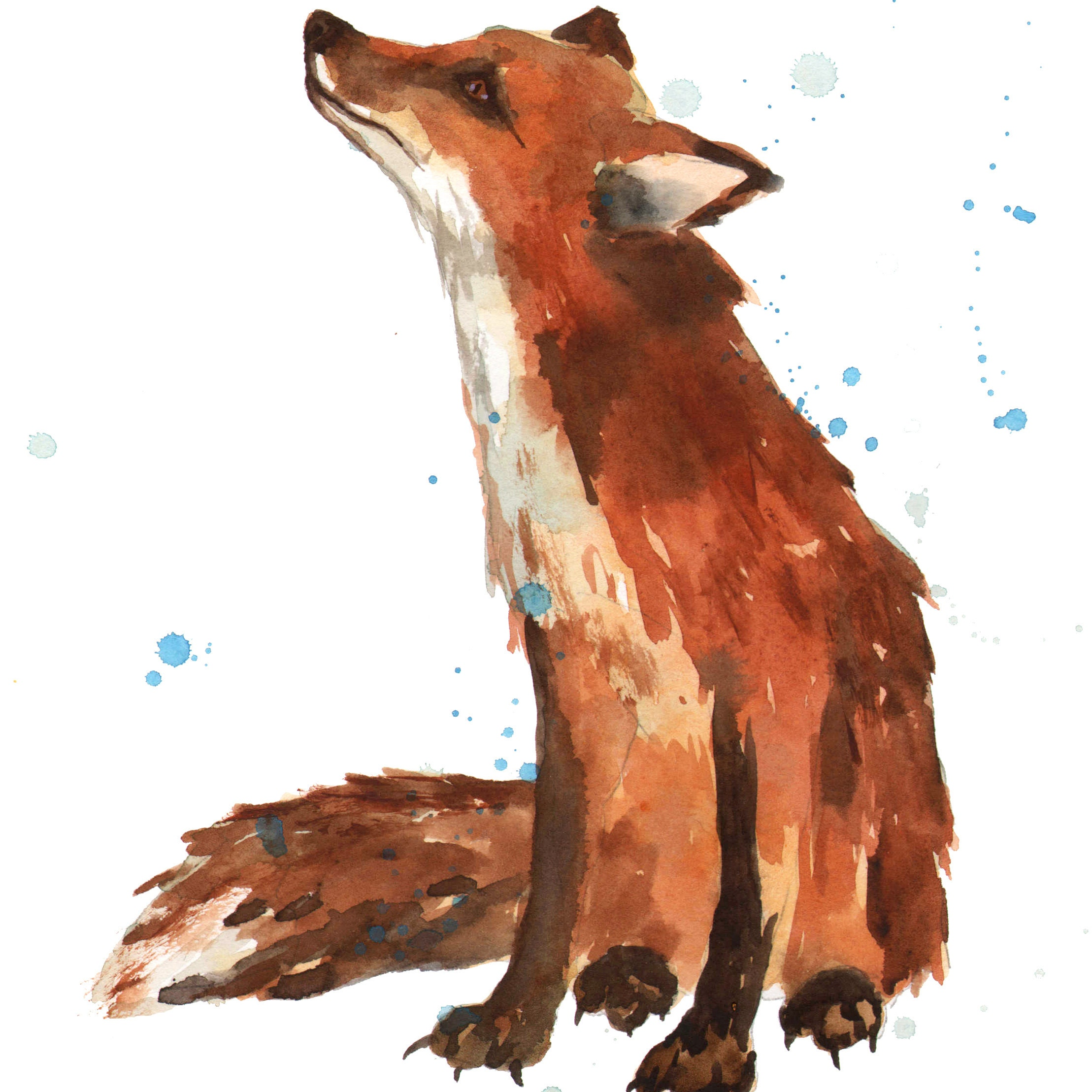 Watercolor Animal Paintings Prints Ready To By AlisonFennellArt