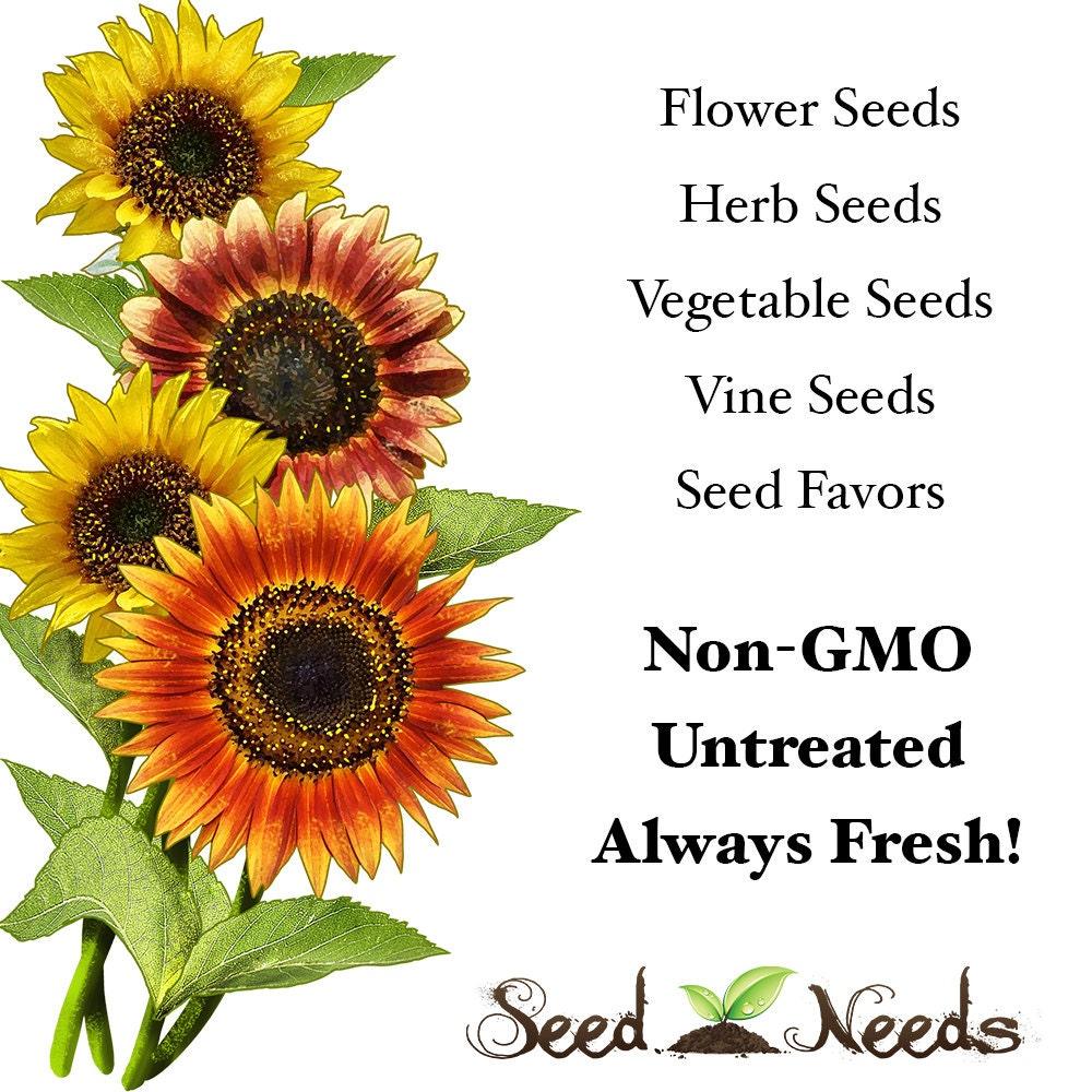 Seed Needs by MySeedNeeds on Etsy