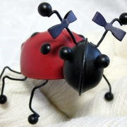 LadybugFiber