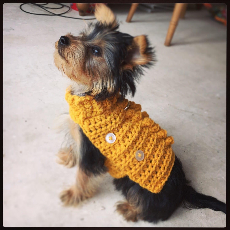 Updates von dogsandhats auf Etsy